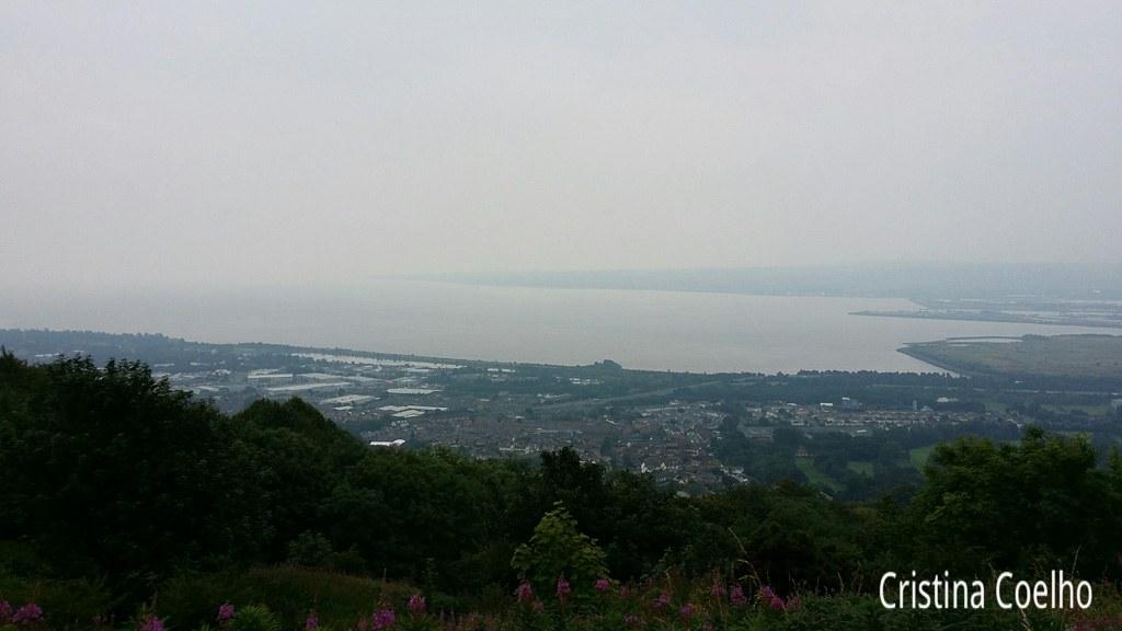 Vista de Belfast