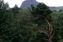 Parque Cave Hill