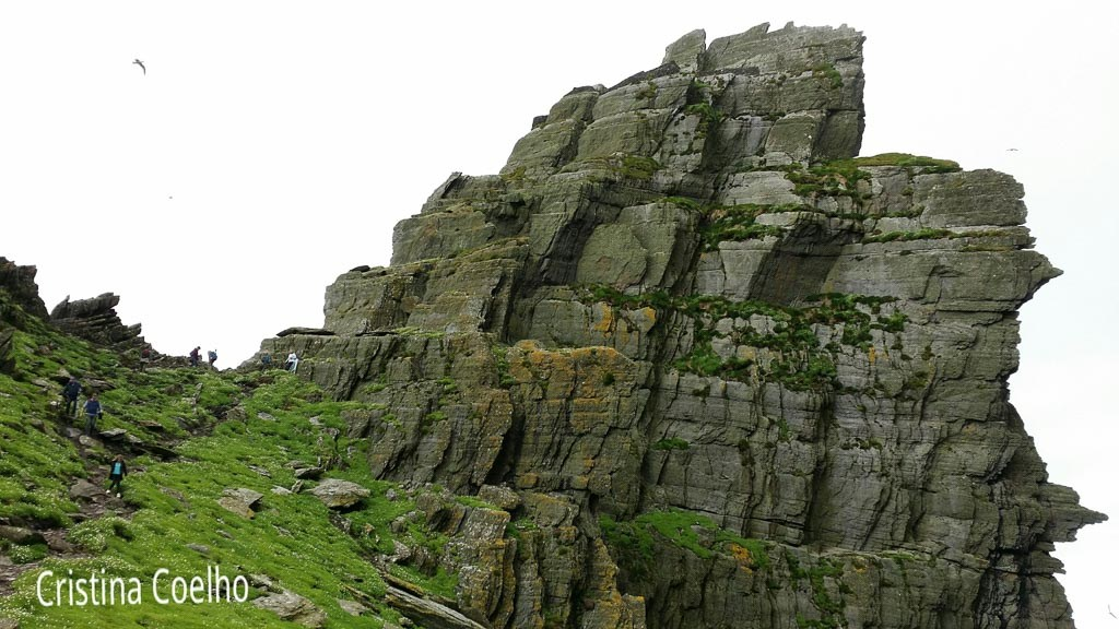 Cliff where some birds nest such as puffins or sea-parrots - Skellig Michael