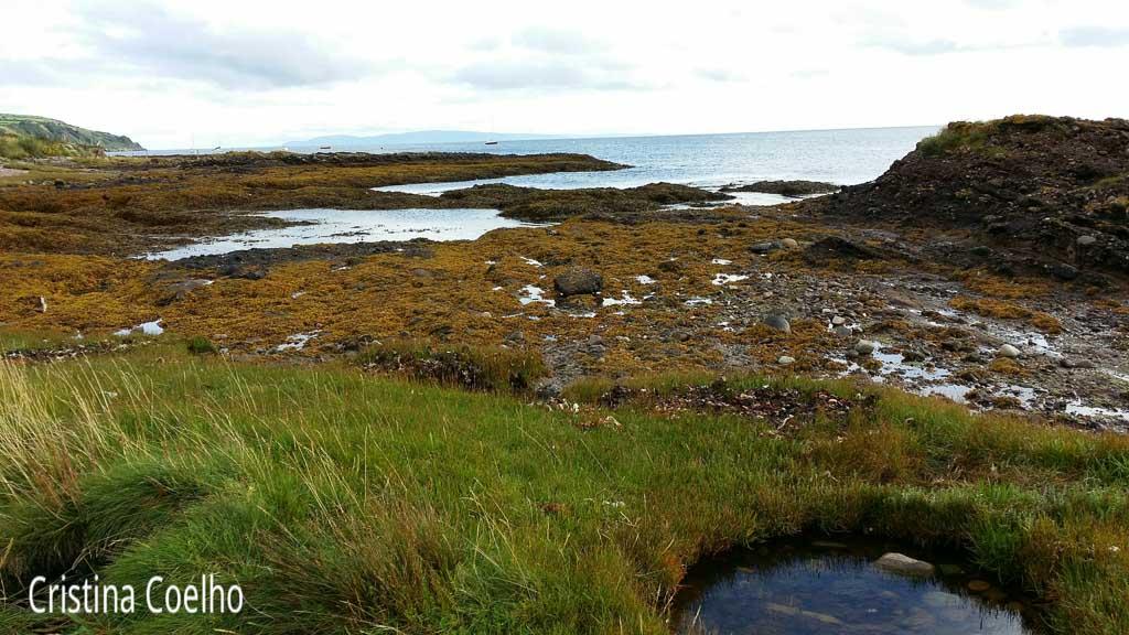Ballymena, Irlanda do Norte, Waterfoot Bay