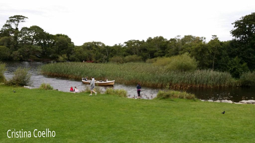 Boats, Elements, Ireland, Kerry, Killarney, Ponds, Water